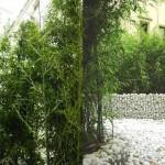 il giardino interno